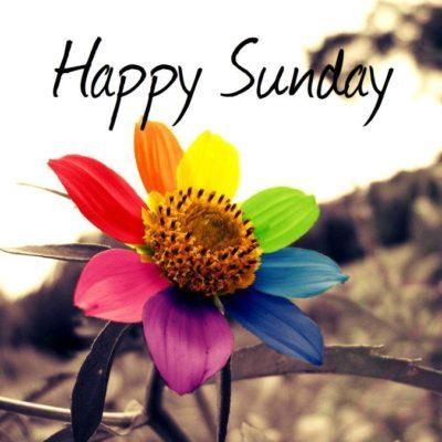 feliz dia domingo