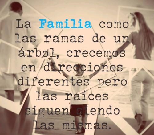 conmemoracion del dia internacional de las familias
