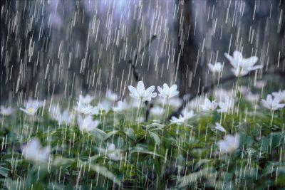 imagenes de lluvia para compartir
