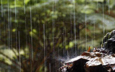 lluvia gif