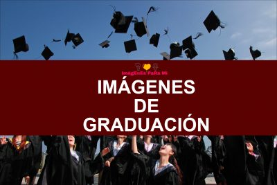 Lee más sobre el artículo Imágenes de Graduación: Celebrando los Logros Académicos