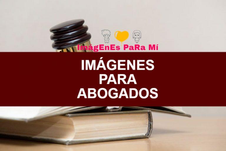 Lee más sobre el artículo Imágenes para Abogados: Los Grandes Defensores de la Ley