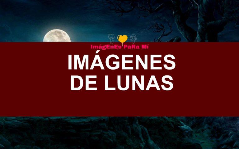 Lee más sobre el artículo Imágenes de Lunas