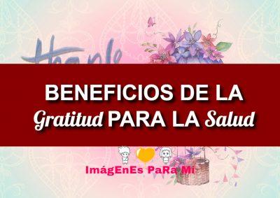 Lee más sobre el artículo 7 Beneficios De La Gratitud Para La Salud